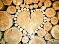 Fair werben mit FSC Holz