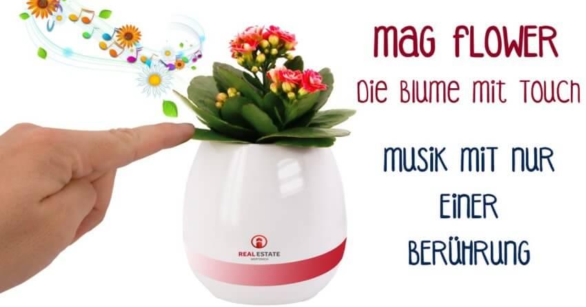 MagFlower -Die Blume mit Touch