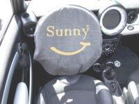 sunny Lenkrad Multituch